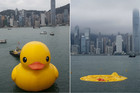 The duck before and after deflating in Hong Kong's Victoria Harbour (AAP)